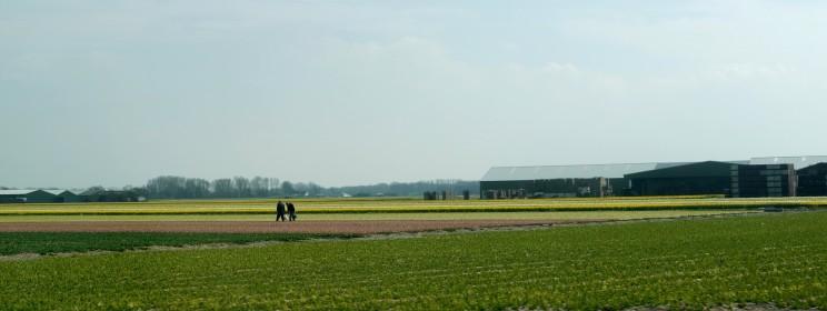 22-avril-2013-amsterdam-29